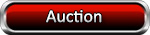 WBC Auction and Auction Store